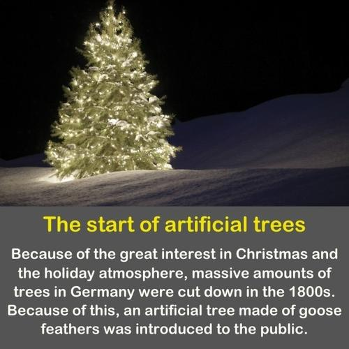 A Christmas tree with lights on the snow.