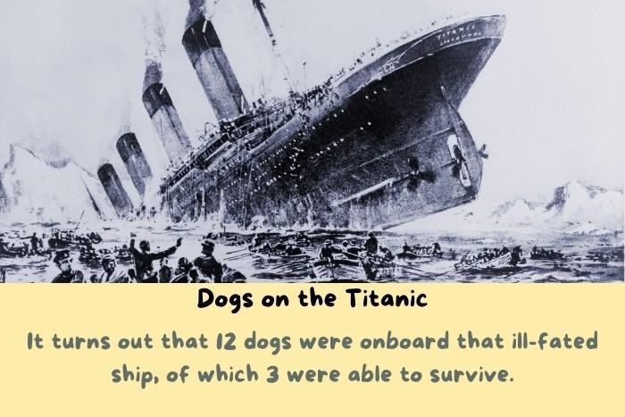 The drowning Titanic.
