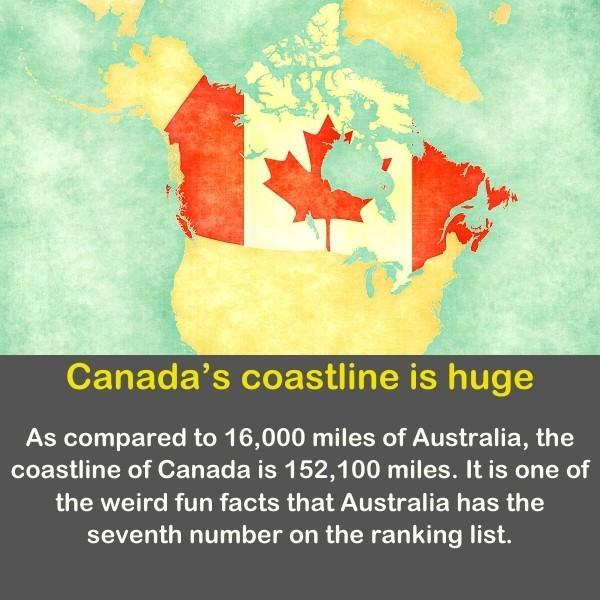 Geography fun fact 13 - Canada's coastline is huge