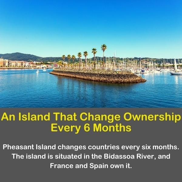 The Pheasant Island