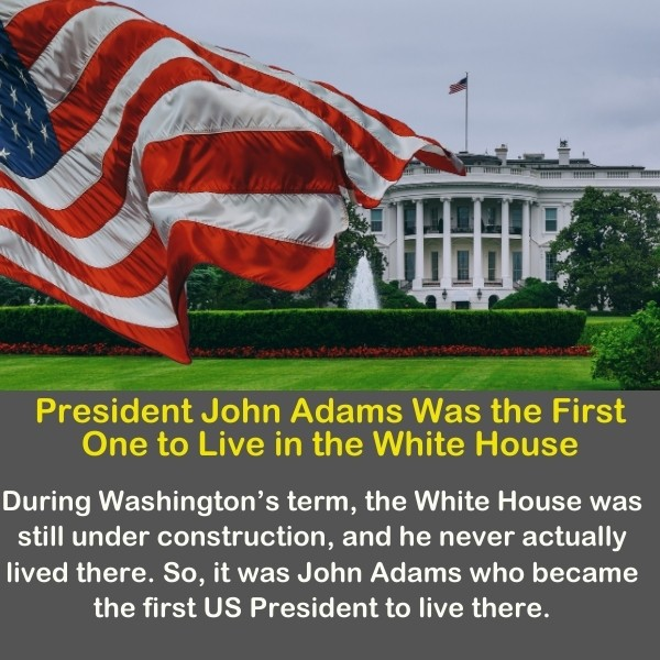 The American flag with the presidential white house in the background.