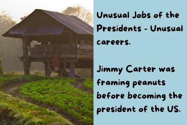 Farming peanuts house - Jimmy Carter was before becoming the president of the US