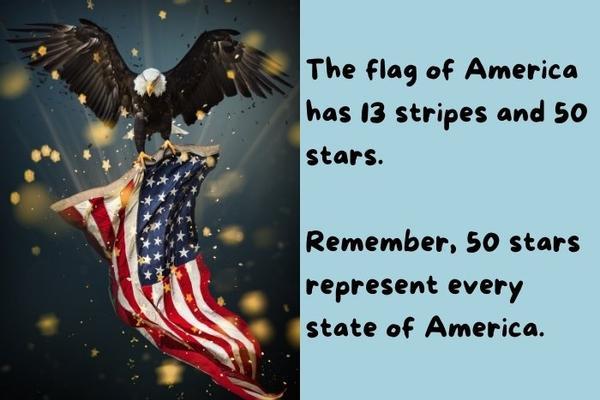 The bald eagle holding the USA flag.
