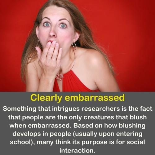 A woman with a funny surprised and embarrassed face.