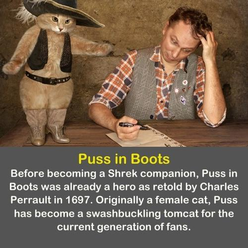 The cat in a boots looking at a man.