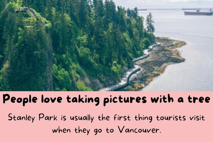 Stanley Park is usually the first thing tourists visit when they go to Vancouver.