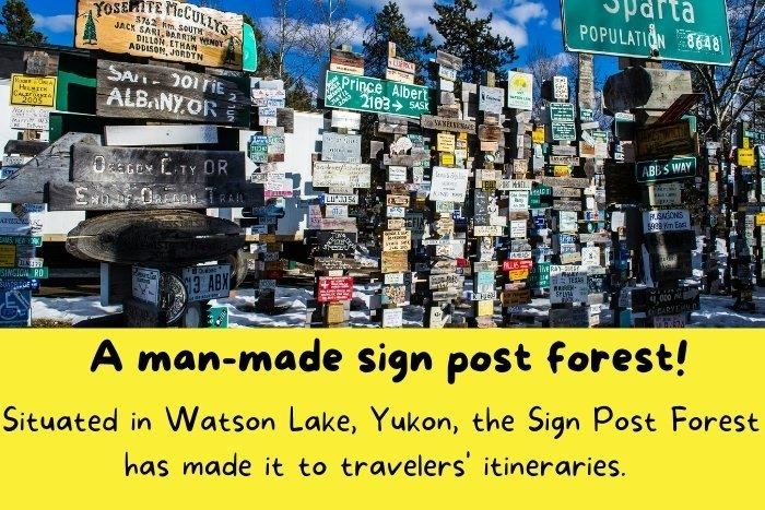 Situated in Watson Lake, Yukon, the Sign Post Forest