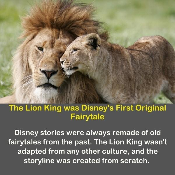 Lions and Lioness from illustrating Disney's lion king.