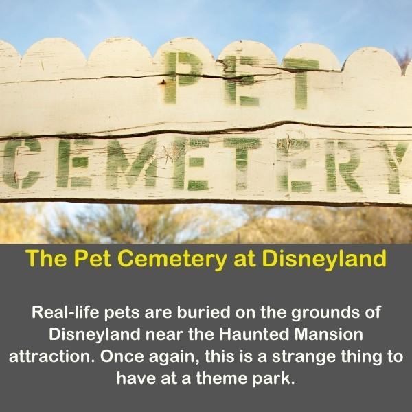 The pet cemetery in Disneyland.
