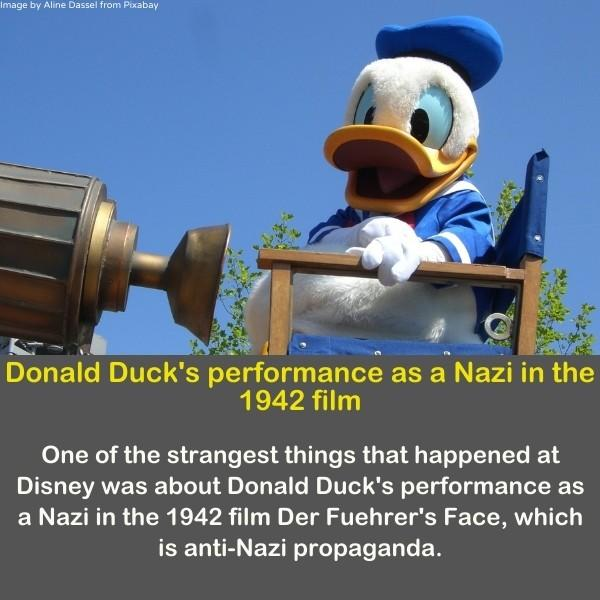 Donald duck sitting on a chair.