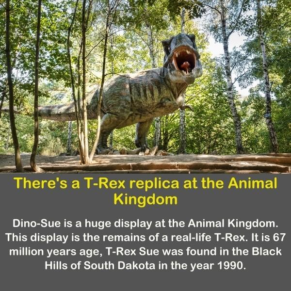 T-rex replica in Disneyland.