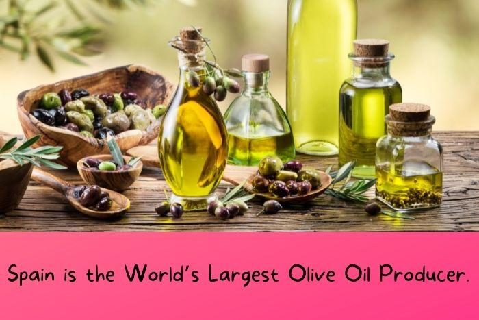 Spain is the World's Largest Olive Oil Producer.