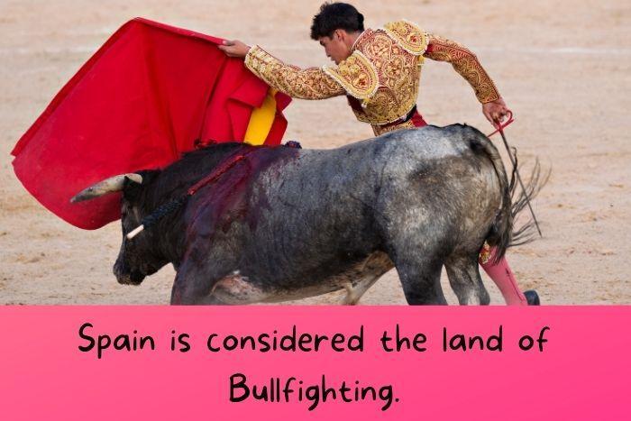 Bullfighting in Spain.