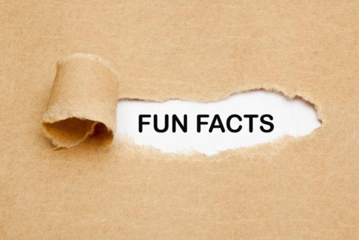 Reading fun facts will help you become more intelligent.