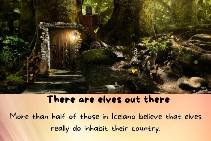 Elves home in the forest.