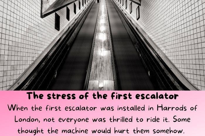 The first escalator.