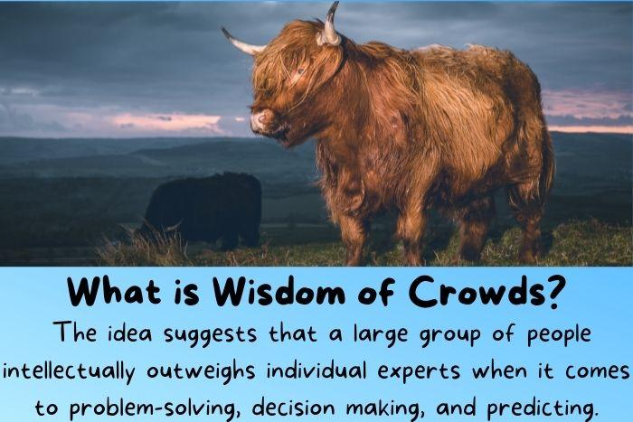The ox weighs is a famous example of the wisdom of the crowd.