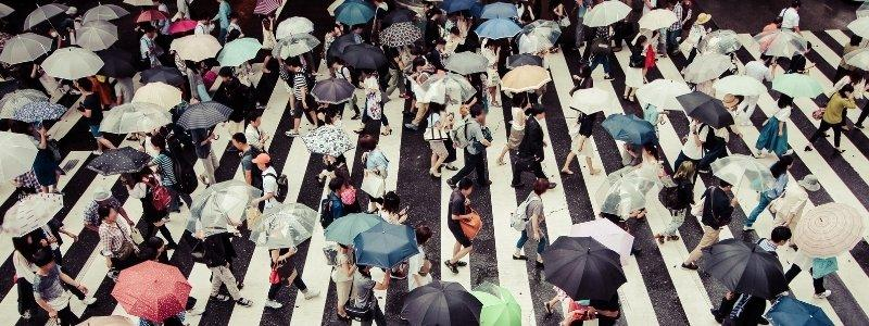 What is collective intelligence? A picture of many people forming a huge crosswalk in the rain.