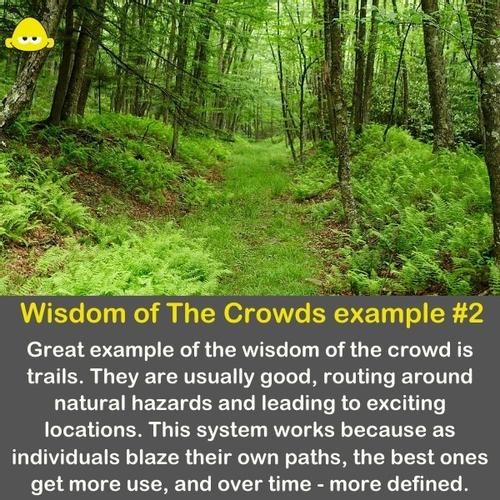 Hiking trails created by the crowd.