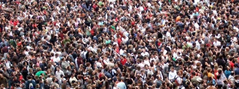 The wisdom of the crowd theory is built on the crowd.