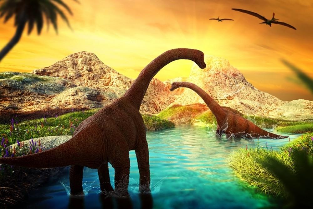 Brontosaurus - one of the gigantic dinosaurs.