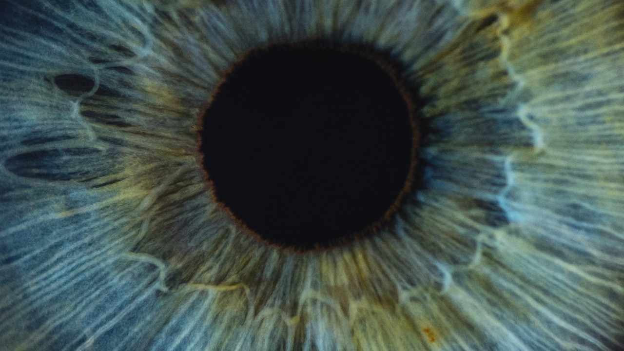 Close up of a human green eye.
