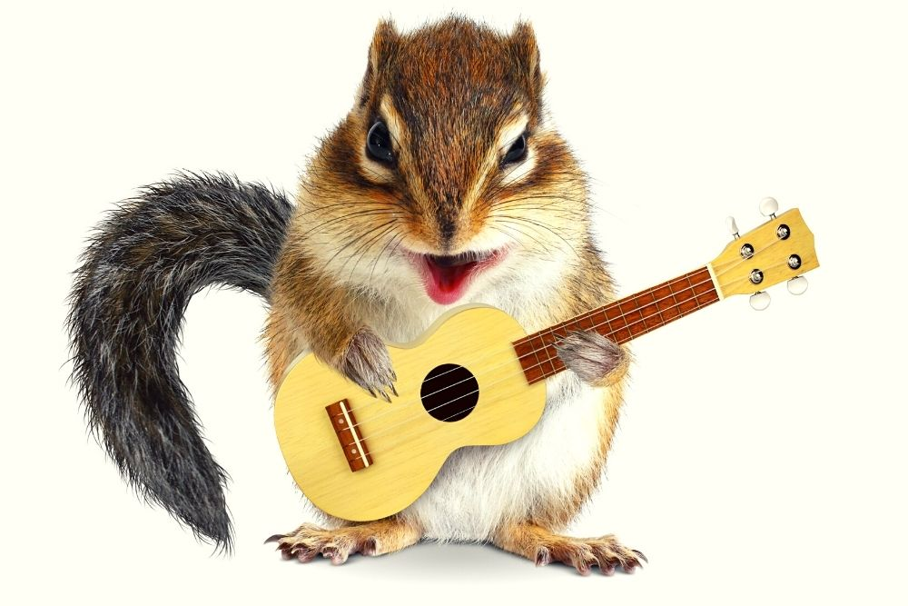 A funny hamster is playing guitar.