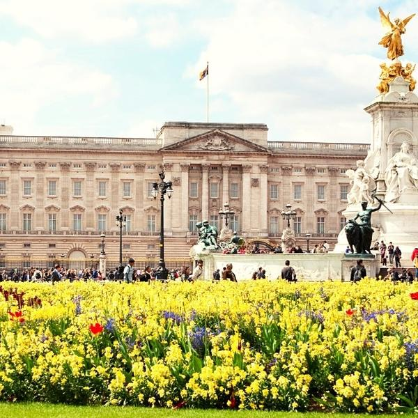 The Buckingham Palace, a magnificent European palace and a special piece of history.