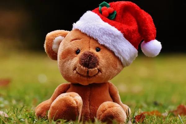 Funny Christmas teddy bear with a Christmas hat.