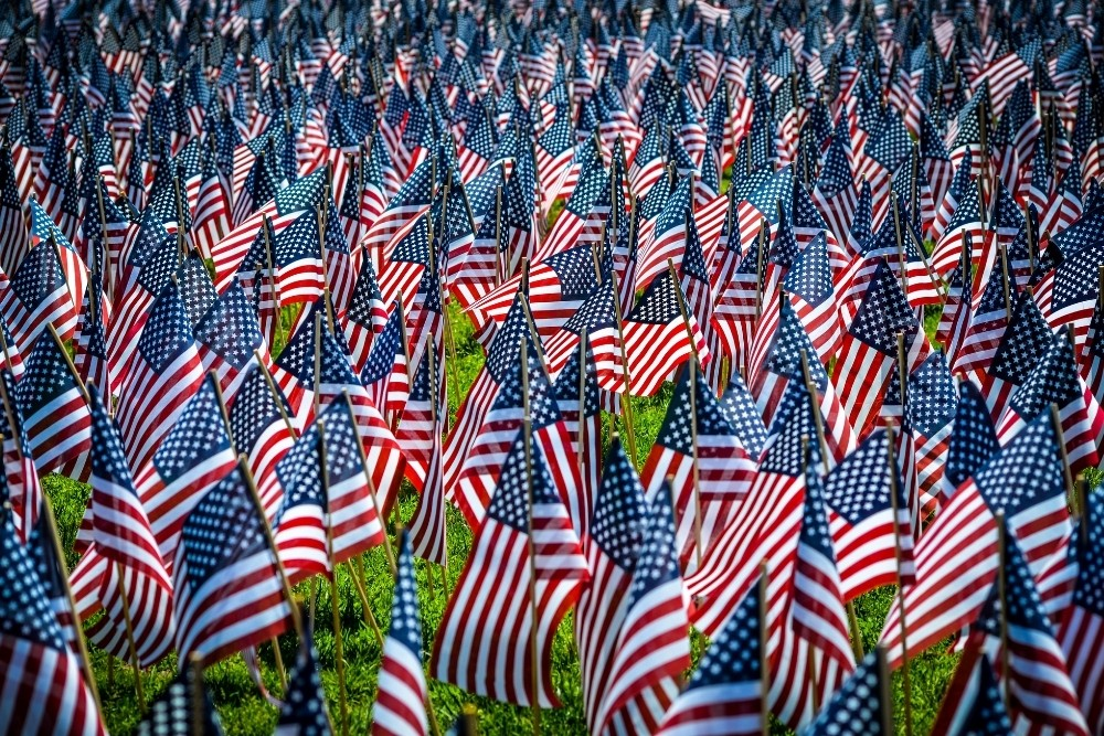 Many US flags on a grass field.