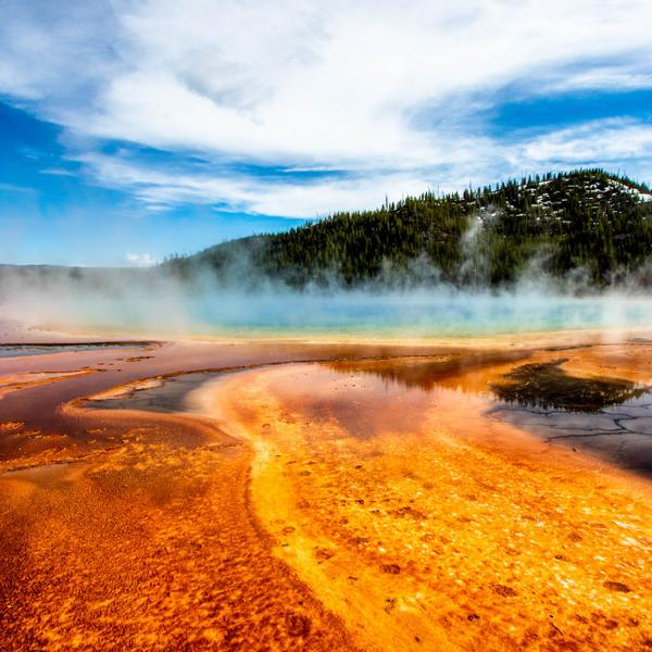 Geysers in the Yellowstone National Park