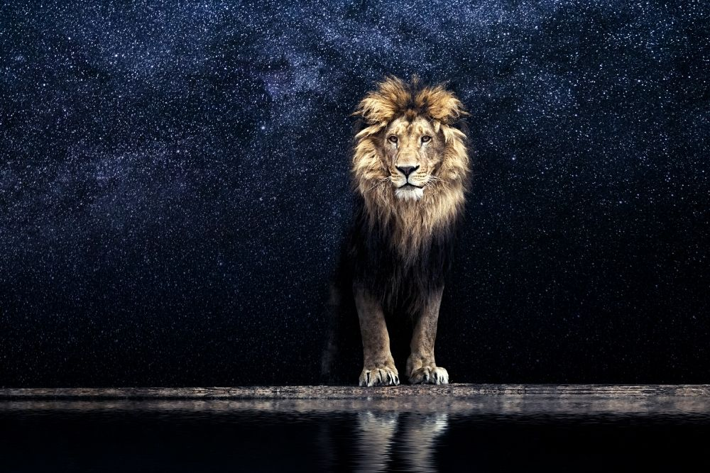 Mufasa - the father of Simba from the Lion King Movie, standing over the lake.