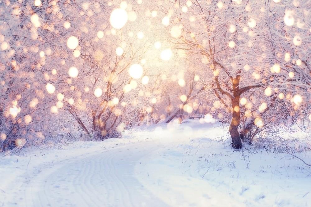 Sunshine in the snowy winter.